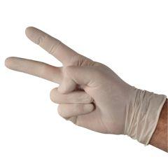 Latex Powder Free Gloves - Large
